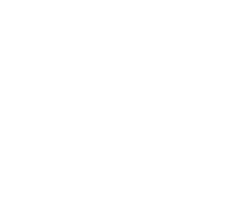 standards for excellence logo